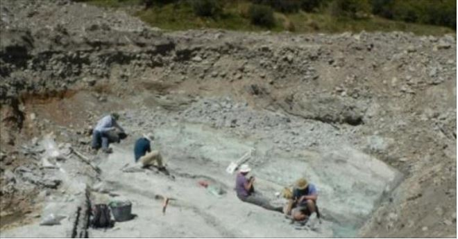 Giant extinct burrowing bat discovered in New Zealand