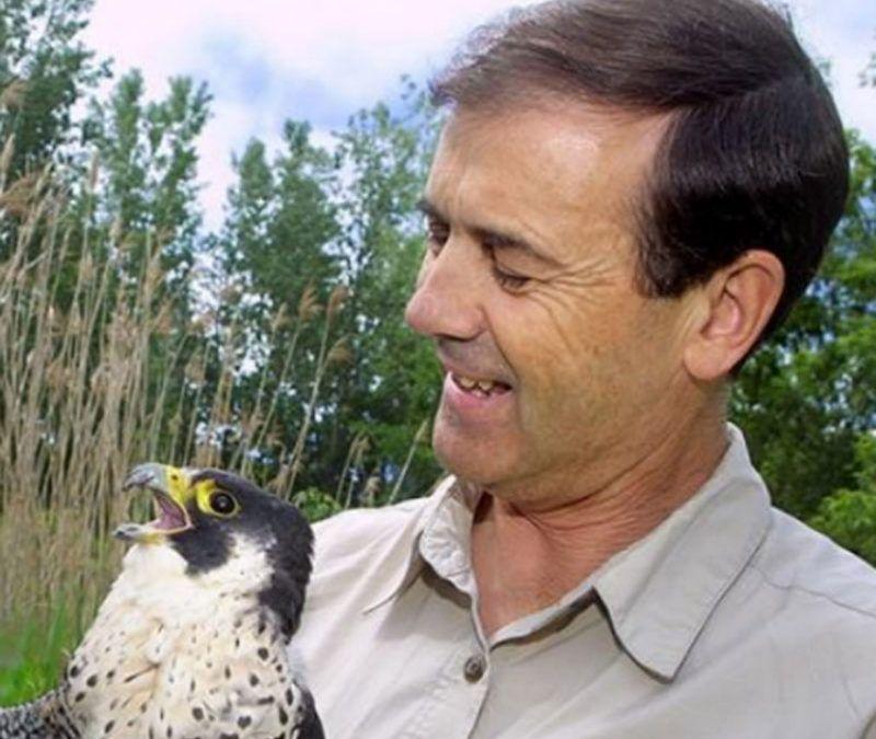 David Bird, Prof.