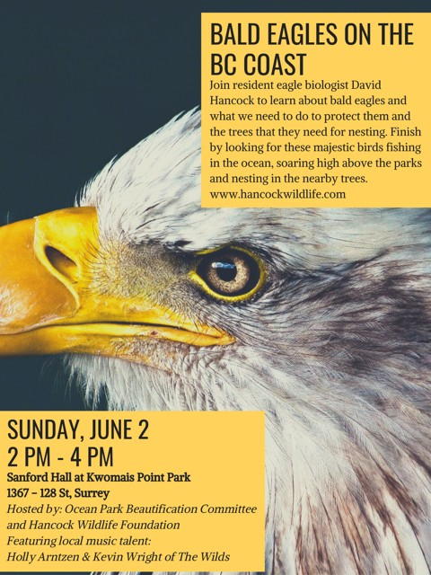 Eagle Extravaganza – June 2nd